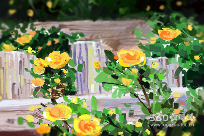 十大寓意吉利的花、10大吉利花
